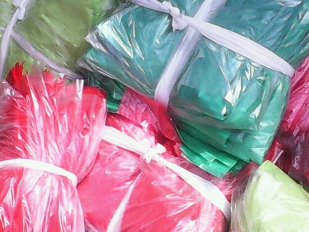 Nylon and Polythene Bag Production Business Plan